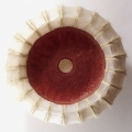 meduse-2004